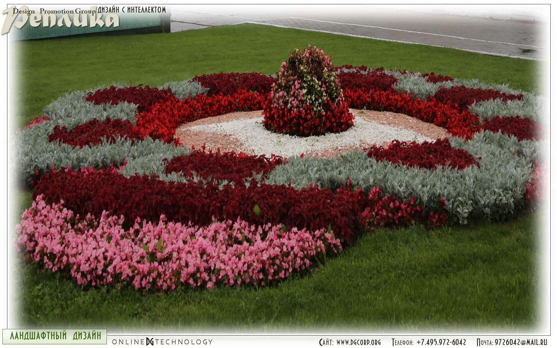 Фото клумбы с однолетними цветами и схемы посадки